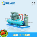 Large Capacity Cold Room (Walk in Freezer) (VCR200)