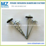E. Galvanized Umbrella Head Twisted Smooth Shank Roofing Nail