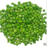 Frozen Green Peas with Good Price