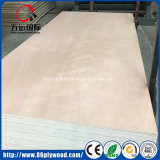 100% Eucalyptus/Birch Okoume/Melamine Plywood for Interior Furniture