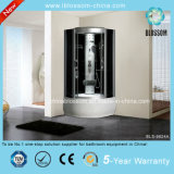 High Quality Complete Steam Massage Shower Room Witn CE (BLS-9824A)