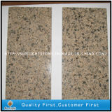 Manufacture Wholesale Desert Gold/Brown Granite Tiles for Flooring/Wall