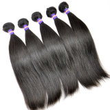 5A Best Sale Straight Hair Weave Virgin Cambodia Human Hair Extension Lbh 089