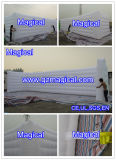Outdoor Giant Customized Inflatable Air Wall (MIC-818)
