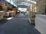 Commercial Plywood for Decorative Using/Packing Plywood Poplar Core 1220*2440mm