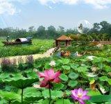 Pond Liner for Lotus Pool