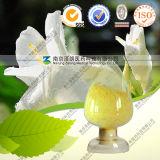 Natural Kaempferia Galanga L Extract Kaempferol 98%