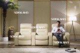 Home Cinema Leather Sofa 795#