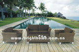 Rattan Furniture/ Outdoor Garden Furniture (BG-N09)