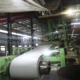 Prime Quality Building Material Prepainted Steel Coil
