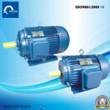 Y Series Cast Iron Three-Phase Induction Motor with CE