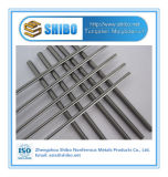 Shibo Star Product Polished High Purity Molybdenum Rod with Factory Whosale Price