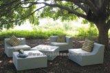 Rattan Furniture (BL-803)