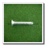 Zinc Plated Kinds of Screw (3.5*16)