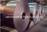 High Quality Hot Rolled Coil Q345
