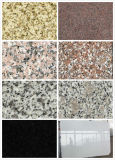 Granite Stone Floor Tile Stairs Outside (BF-0627-03)