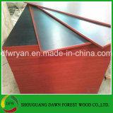 Waterproof Film Faced Plywood, Resistant to Corrosion Attack Film Faced Plywood and Formwork Film Faced Plywood Plywood Board