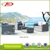 Rattan Sectional Sofa Dh-163