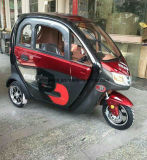 150km Long Range Electric Car with 3 Seat