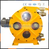 Top and Hot Peristaltic Hose Pump Machine Manufacturers Mini