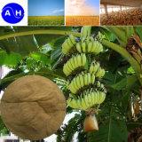 Wheat Organic Fertilizer Amino Acid 65%