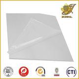 Vacuum Forming PVC Sheet Roll