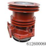 Weichai Water Pump 612600060260 for Sinotruk, Dongfeng, Foton, FAW Truck