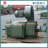 Z4 Medium Size DC Electric Motor