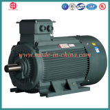 Electric Light Weight AC Induction Motor