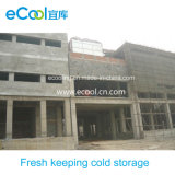 Middle Size Low Temperature Cold Room for Vegetables and Fruits Fresh Keeping