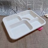 China Biodegradable Cornstarch Food Container Lunch Tray Eco Friendly Paper Tray
