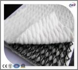 Tri-Dimension Composite Geonets for Drainage for Roadbase/Railway/Tunnel