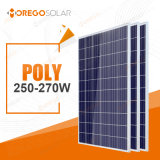 Morego PV Solar (cells) Panel / Product 250W 260W 270W Poly