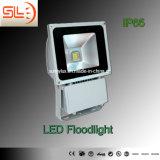 Gray Colour 50W IP65 LED Floodlight