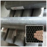 Stainless Steel Hexagonal Wire Netting