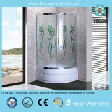 Double Sliding Door and Stainless Steel Glass Shower Room (BLS-9621)