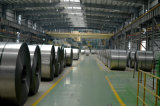 SGCC/Dx51d Galvanized Steel Sheet / Gi