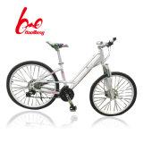 24# Aluminium Alloy City Public Bicycle