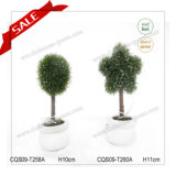PVC Fashionable Garden Decoration H10-19cm Topiary Tree for Home Decoration