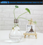 Light Bulb Shape Glass Vase Stand Flower Terrarium Container Decor