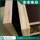 Poplar/Birch/Hardwood Core Marine Plywood/Shuttering Plywood/Film Faced Plywood for Construction (HB001)