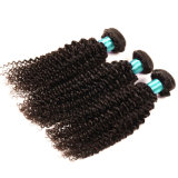 Kinky Curly Lace Frontal Closure with Bundles Brazilian Virgin Hair with Closure Human Hair Weaving 3bundles with Lace Closure