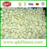 IQF Frozen White Garlic Cloves with Kosher Certificate