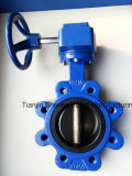 Cast/Ductile Iron Lug Type Butterfly Valve with Turbine Gear