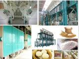 Cheapest Wheat /Corn /Rice Flour Milling Machine/Flour Mill