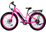 Custom Designed Mountain E Bicycle