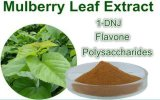 1-Dnj Mulberry Leaf Extract 1-Deoxynojirimycin CAS No. 19130-96-2 (70956-02-4)