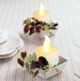 Bulb Battery Operated Flameless LED Tea Light for Seasonal & Festival Celebration, Electric Fake Candle