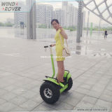 Personal Assistive Mobility Device Electric Balance Scooter