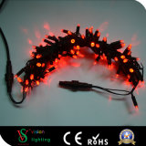 Waterproof White Color LED Red Christmas String Lights